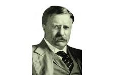 Баннер, плакат «Теодор Рузвельт»