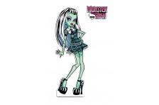 Баннер, плакат, постер «Monster High» (рус. Школа Монстер Хай). Вариант-04