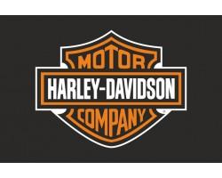 Прапор любителів Harley-Davidson (укр. Харлі-Девідсон). Варіант-01