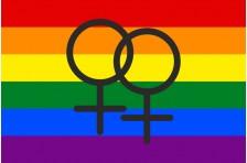 Флаг ЛГБТ - сообщества с символом лесбеянок