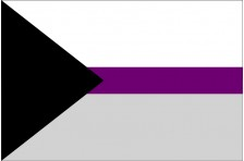 Флаг Demisexual Pride Flag