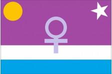 Флаг планеты Венера. Вариант-03