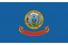Флаг штата Айдахо США