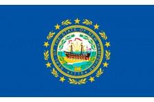 Флаг штата Нью-Гэмпшир США