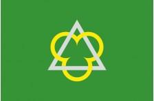 Флаг села Большой Карашин Макаровского района Киевской области Украины