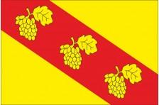 Флаг села Виннички Пустомытовского района Львовской области Украины