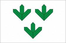 Флаг села Яковское Свалявского района Закарпатской области Украины