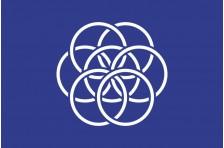 Флаг планеты Земля. Проект-02